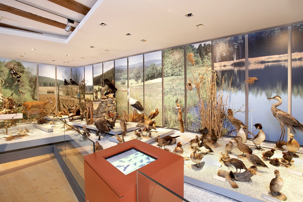 Stadtmuseum Zehentstadel Nabburg Plan G Innenarchitekten